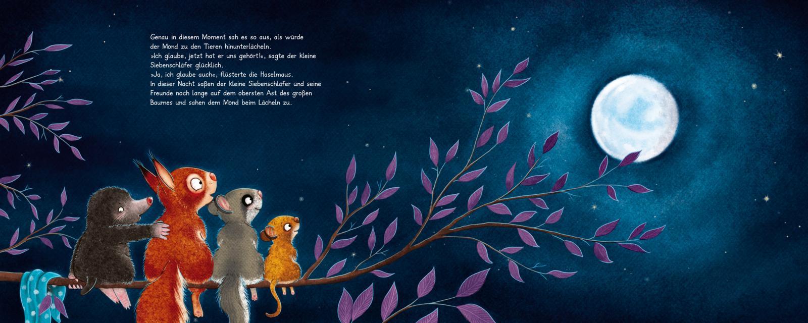 Die Geschichte vom kleinen Siebenschläfer, der dem Mond Gute Nacht sagen wollte Astaussicht